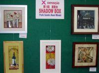 xexposicao_shadowbox12G
